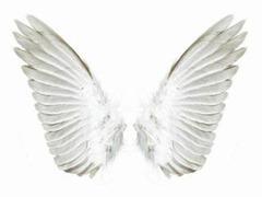 Проявление ангела