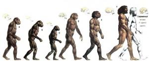 продукт эволюции