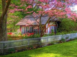 Дом любви