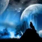 Существа и звезды