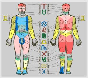 Тело и зодик