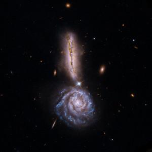 Новая галактика